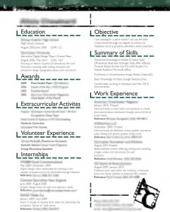 My Resume (blurred)